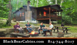 Black Bear Cabins Cook Forest