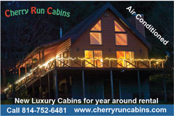 Cherry Run Cabins Cook Forest