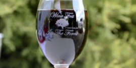 Wine Fest in the Forest: Our Annual Wine Tasting Event In Cook Forest